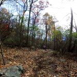 bear mountain trail - 15 - unpaved trail