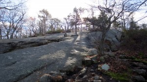 major welch trail - rocks #2