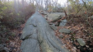 major welch trail - rocks