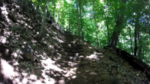 palisades state line lookout - peanut leap trail - forest view trail staircase