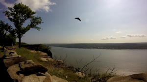 palisades state line lookout - peanut leap trail - hawk