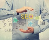 Search Engine Optimization Basics Thoroughly Explained